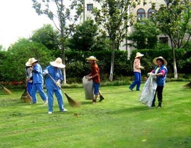 草地清理养护